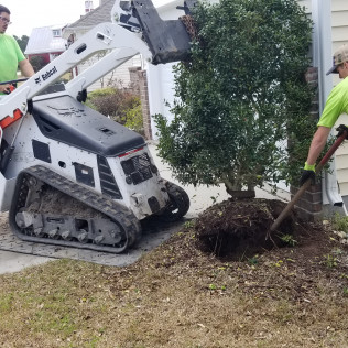 Landscaping in Myrtle Beach, SC