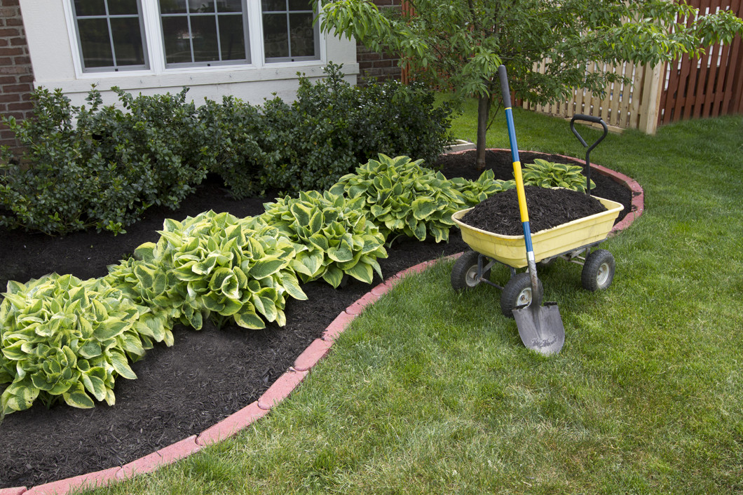 Keep Your Lawn Happy & Healthy With a Reliable Irrigation System